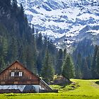 Swiss Farmhouse by vivsworld