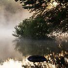 Misty Morn by Karri Klawiter