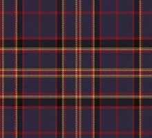 02877 Sussex County, Delaware E-fficial Fashion Tartan Fabric Print Iphone Case by Detnecs2013