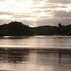 New Zealand beach evening by chelblack