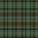02879 Mohave County, Arizona E-fficial Fashion Tartan Fabric Print Iphone Case by Detnecs2013