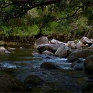 Bahana Creek 2 by Chris Cohen