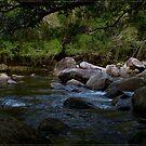 Bahana Creek 2 by Chris Cohen