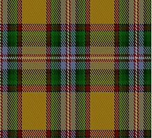02886 Essex County (Ontario) District Tartan Fabric Print Iphone Case by Detnecs2013