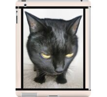 Cranky Kitty iPad Case/Skin