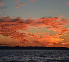 Edmonds Summertime Sunset by Julie Van Tosh Photography