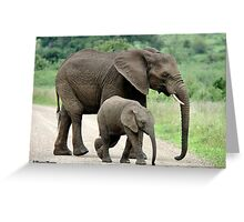 SIDE BY SIDE - THE AFRICAN ELEPHANT – Loxodonta Africana - Afrika Olifant Greeting Card