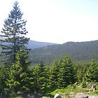 View from the Brocken, Harz. by Bobgle