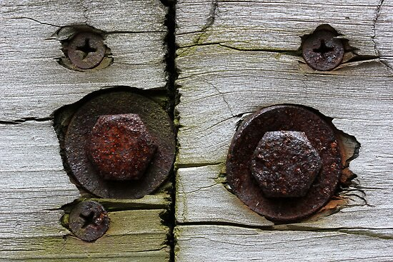 Bolts and Screws by marybedy
