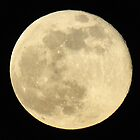 Supermoon 2013 by venny