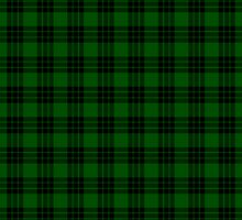 Graham Tartan by ColorPalette