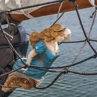 Figurehead by PhotosByHealy