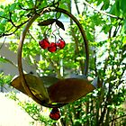 Backyard Bird Feeder - Spring by ctheworld