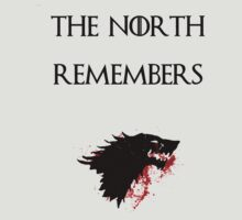 The North Remembers GOT by HenryTheSpice