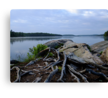 Smoke Lake Shoreline- Algonquin Park Canada Canvas Print