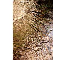 Water .. Photographic Print