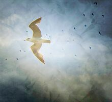 Flight by Anne  McGinn