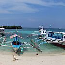 Welcome to Crystal Cove Island - Philippines by Wayne Holman