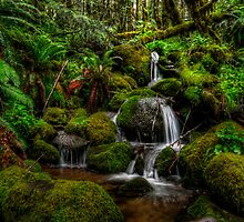 Falling In Love Again by Charles & Patricia   Harkins ~ Picture Oregon