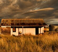 Old Shearers Quarters (Bonshaw, NSW) by Julia Ott