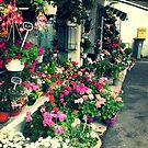 Flowers in May by identit3a