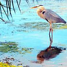 Great blue under palm by ♥⊱ B. Randi Bailey