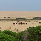 All aboard the Camel Train by archieswell