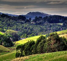 South Gippsland Scene. by Bette Devine