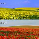 Fields of Change by mikebov