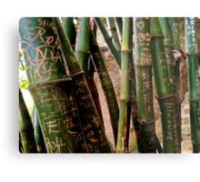 bamboo city Metal Print