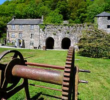 Cotehele Mill by CHINOIMAGES