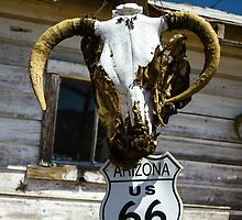 Welcome to Route 66 by Suzi Harbison