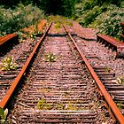 Abandoned train tracks by Claudia Sims