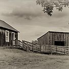 "Farm Buildings at ""Bygone Days"", Collingwood, ON, Canada  by Gerda Grice"