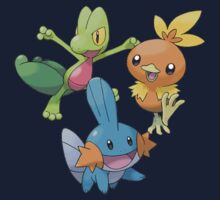 Gen 3 Starters by Stephen Dwyer
