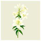 White Lily by rusanovska