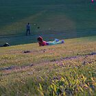 It isn't summer unless you roll down a hill! by MarianBendeth