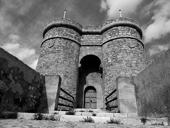 castle- spain by dedakota