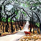 109. Tangled Oaks in the King Ranch. by amyglasscockart
