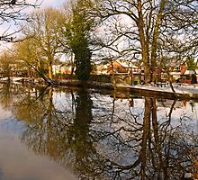 Trees Beside The Wintry Rolleston Pond by Rod Johnson