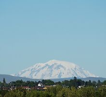 Mt Adams from Yakima by Loisb