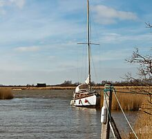 Boat on the Broads by Gary Rayner