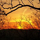 Amicalola Sunset by Bob Hardy