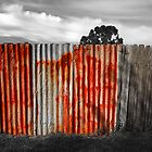 Old Fence by Paul Earl
