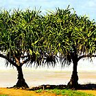 under the Pandanas Tree by Trish Threlfall