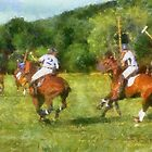 Polo of TN  by Daniel  Oyvetsky
