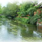 River Avon at Salisbury by beracox
