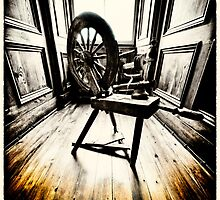 The Spinning Wheel by fraser68