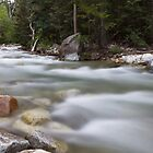 Little Cottonwood River by Alan Mitchell