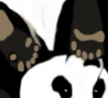 Playful panda Sticker